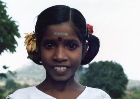 Nilgiri hills  Tamil Nadu