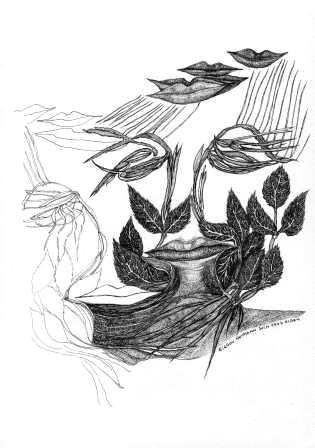 illustration du Djamel Amrani (Algérie) 4